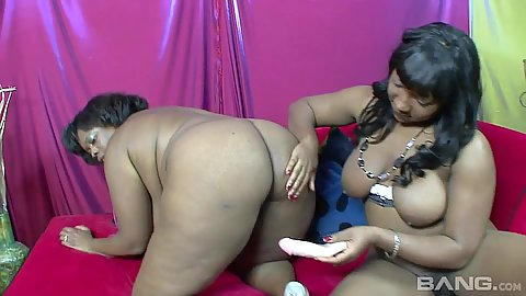 Vanessa Bazoomz and Tiffany Staxxx bend over to get a dildo in their cunt