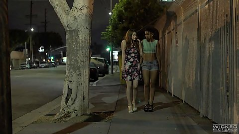 Two girls looking for action Skin Diamond and Bree Daniels