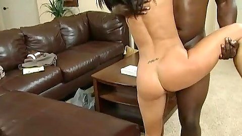 Great doggy style on a leather couch