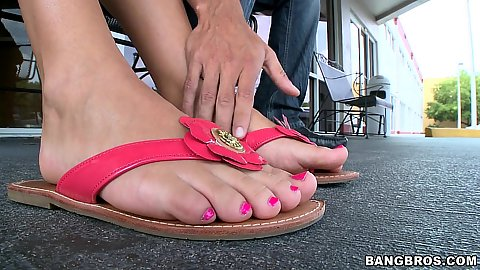 Roxy love on teh roof top relaxing with her feet