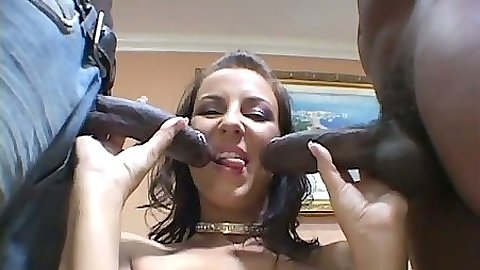 Maria Bellucci sucking two black cocks and anal reverse cowgirl with hairy pussy