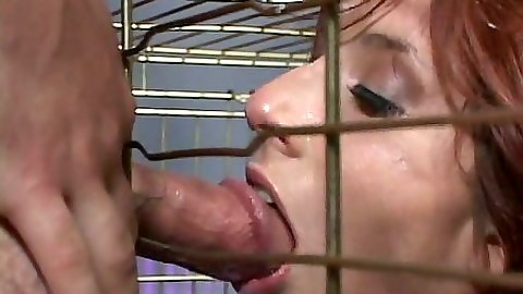 Blowjob and cum eating fetish with cage girl redhead