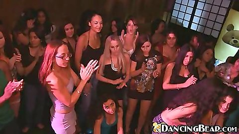 Hot chicks are fighting to get a piece of dancing bear